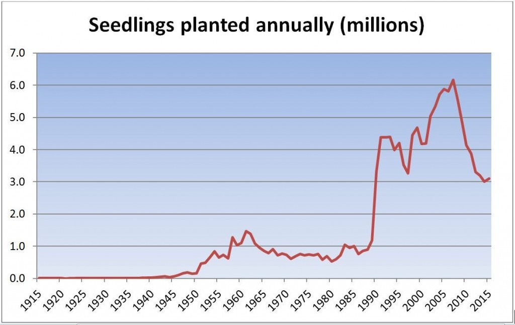 Chart showing the development of tree planting for afforestation cover over the past century